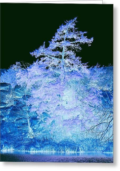 Mickey Harkins Greeting Cards - Snowy Tree Greeting Card by Mickey Harkins