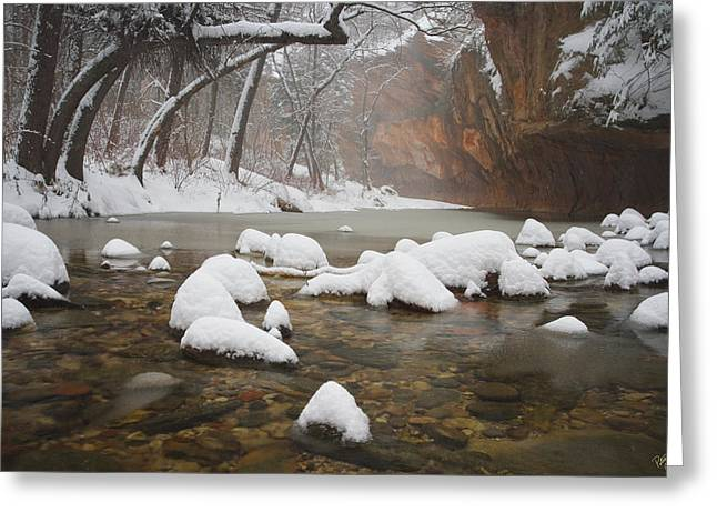 West Fork Greeting Cards - Snowy West Fork Greeting Card by Peter Coskun