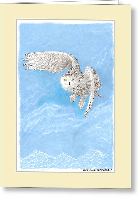 Adults Drawings Greeting Cards - Snowy White Owl Art Greeting Card by Jack Pumphrey