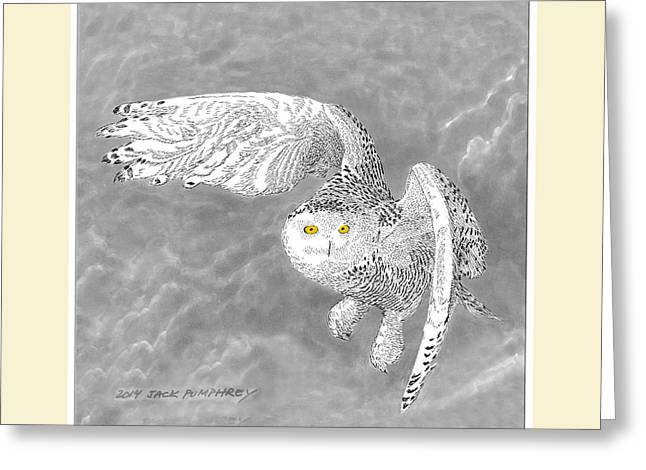 Snowy White Owl Greeting Cards - Snowy White Owl Drawing Greeting Card by Jack Pumphrey