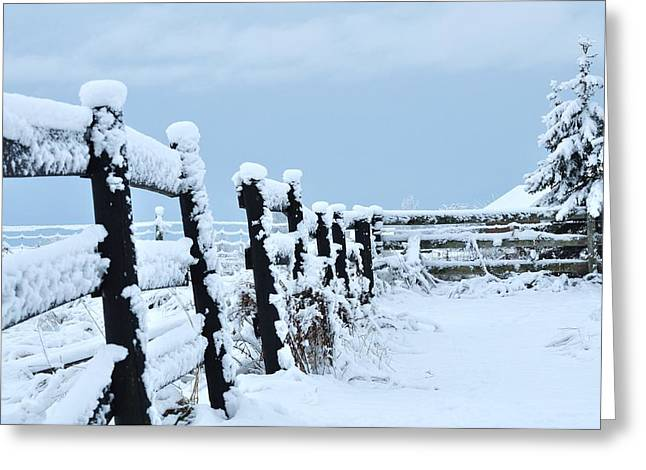 Winter Digital Photo Scene Greeting Cards - Snowy Winter Greeting Card by Lisa  DiFruscio