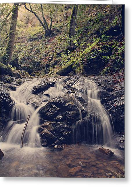 Falling Water Creek Greeting Cards - So Easy to Fall Greeting Card by Laurie Search