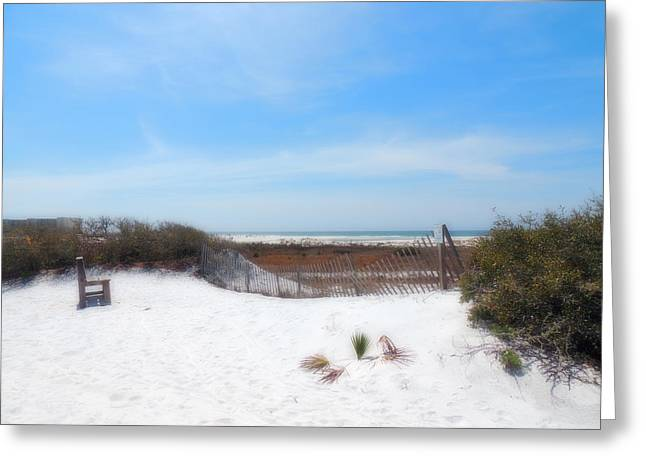 Panama City Beach Greeting Cards - So Much To See Greeting Card by Teresa Schomig