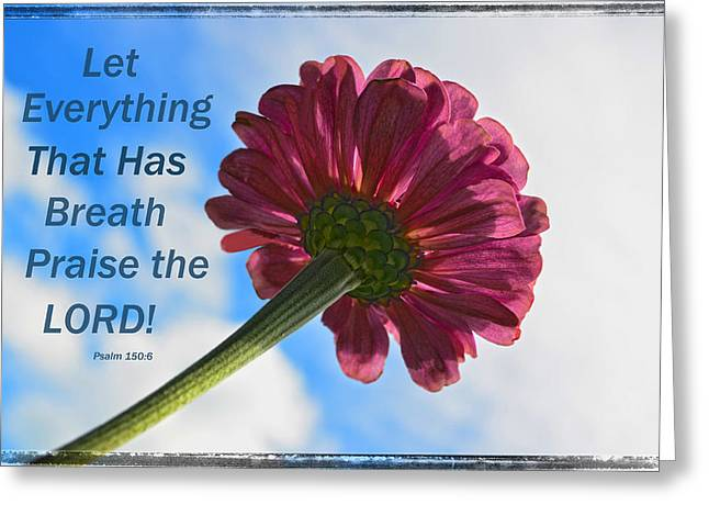 Let Everything That Has Breath Greeting Cards - Soaking up the Sunlight With Scripture Greeting Card by Sandi OReilly