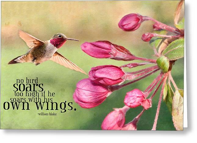 Kathy Jennings Photography Greeting Cards - Soaring Greeting Card by Kathy Jennings