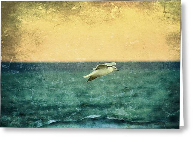 Flying Seagull Digital Art Greeting Cards - Soaring Seagull Greeting Card by Heidi Piccerelli