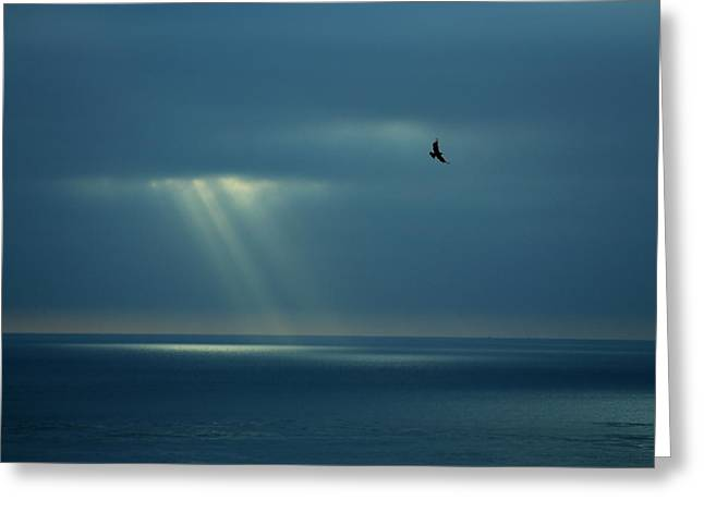 Soaring With Rays Of Hope Greeting Card by Richard Cheski