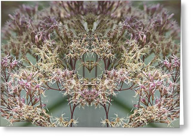 Floral Digital Art Greeting Cards - Social Butterflies Digital Art Greeting Card by Thomas Woolworth