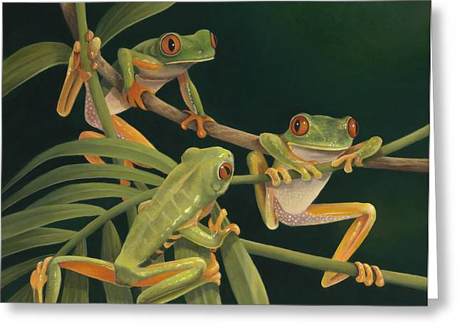 Red Eyed Leaf Frog Greeting Cards - Social Climbers Greeting Card by Laura Regan