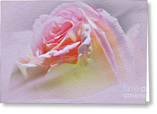 Floral Digital Art Greeting Cards - Soft And Delicate Petals Greeting Card by Judy Palkimas