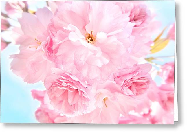 Strength Photographs Greeting Cards - Soft Blue Sky with Pink Flowers Greeting Card by Marianna Mills