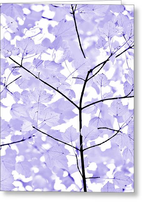 Soft Lavender Leaves Melody Greeting Card by Jennie Marie Schell