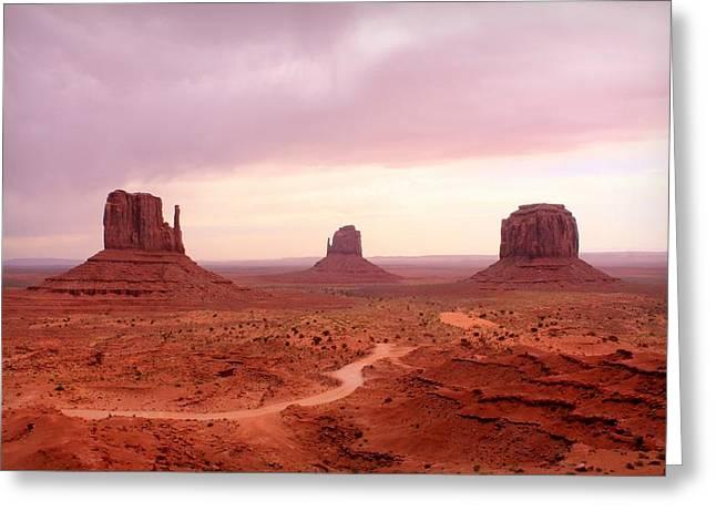 Navajo Basin Greeting Cards - Soft Mittens Greeting Card by Elizabeth Sullivan