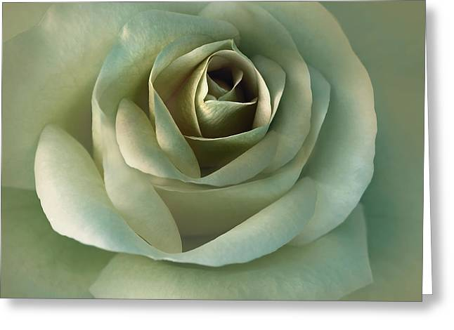 Olive Green Photographs Greeting Cards - Soft Olive Green Rose Flower Greeting Card by Jennie Marie Schell