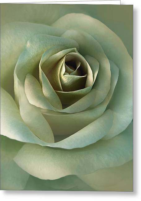 Soft Olive Green Rose Flower Greeting Card by Jennie Marie Schell