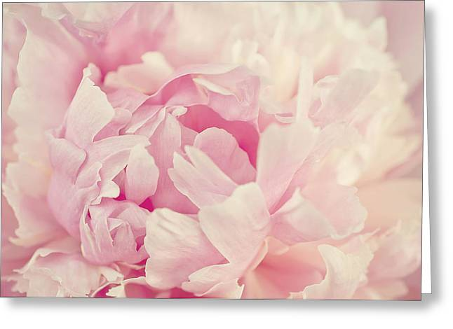 Bedroom Art Greeting Cards - Soft Peony Greeting Card by Gwen Gibson