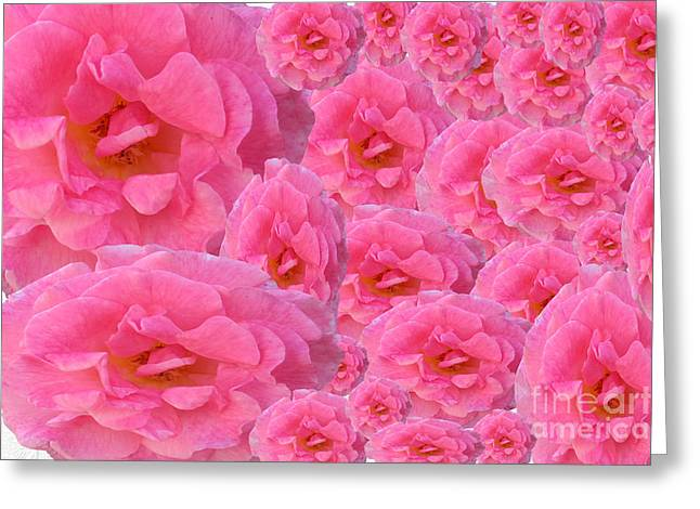 Installation Art Greeting Cards - Soft Pink Roses Greeting Card by Tina M Wenger