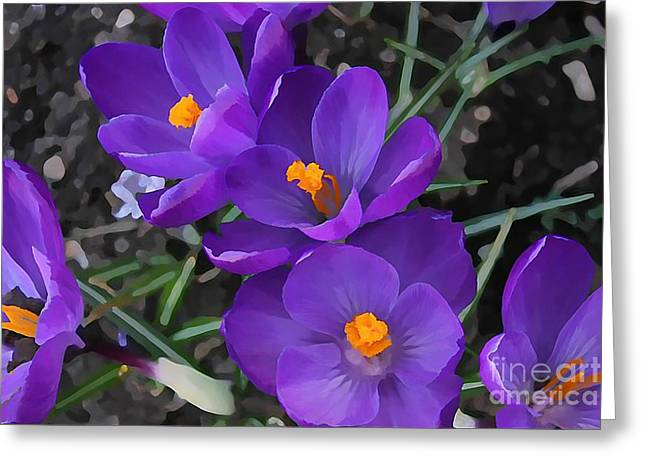 Floral Digital Art Greeting Cards - Soft Purple Crocus Greeting Card by Judy Palkimas