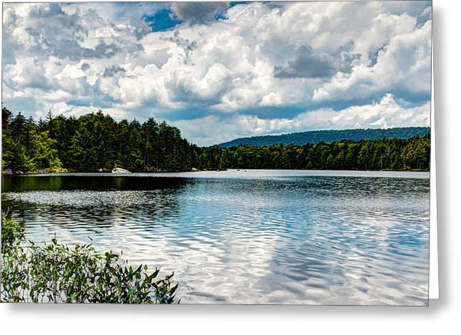 Lush Green Greeting Cards - Soft Ripples on Bubb Lake Greeting Card by David Patterson