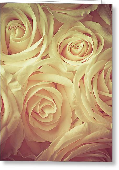 Yellow Flower Scent Greeting Cards - Soft Rose Light Greeting Card by Garry Gay