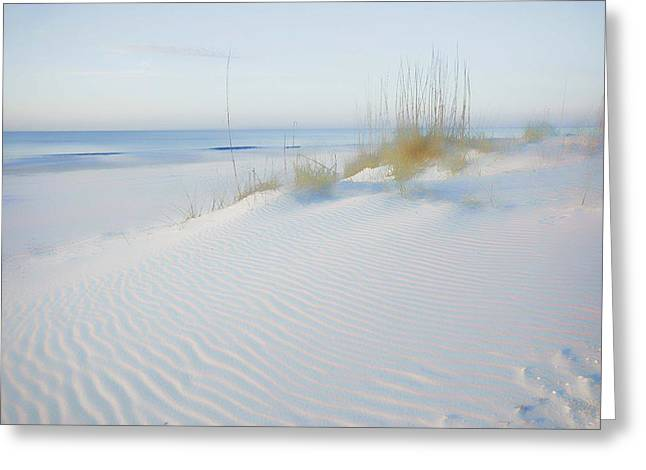 Sand Fences Greeting Cards - Soft Sandy Beach Greeting Card by Michael Thomas