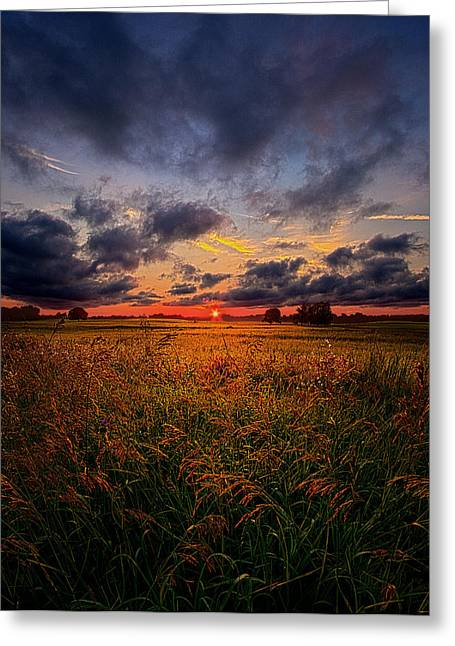 Geographic Greeting Cards - Soft Spoken Secrets Greeting Card by Phil Koch