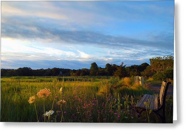East Dennis Ma Greeting Cards - Soft Summer Morning Greeting Card by Dianne Cowen