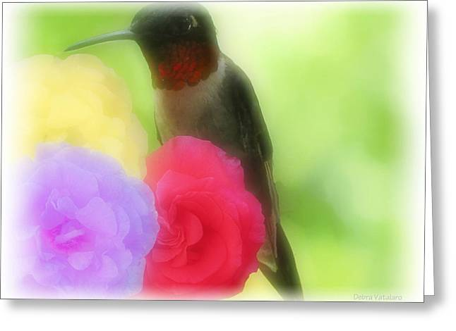 Ruby Throated Hummingbird Wall Art Greeting Cards - Soft Touch 4 Greeting Card by Debra     Vatalaro