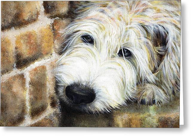 Hairy Dog Greeting Cards - Soft Wheaten Terrier Greeting Card by Natasha Denger