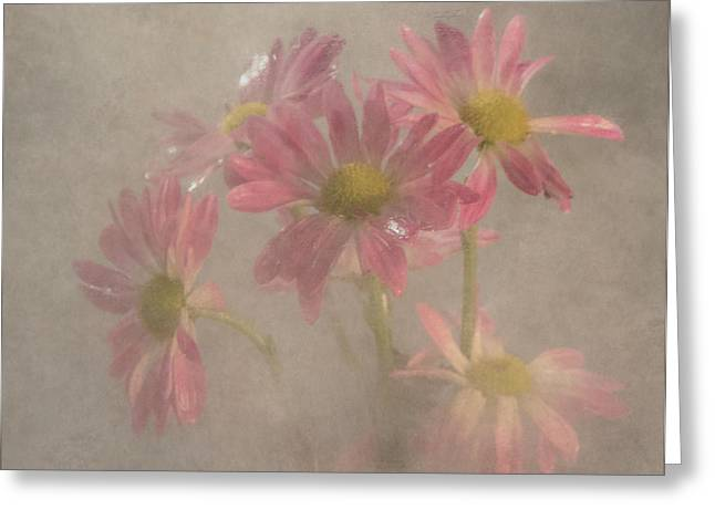 Early Spring Greeting Cards - Softly Greeting Card by Angie Vogel