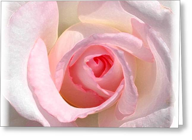 Artistic Photography Greeting Cards - Softness Greeting Card by Kathleen Struckle