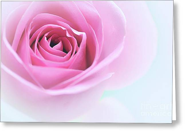 Gentleness Greeting Cards - Softness Greeting Card by Kaye Menner