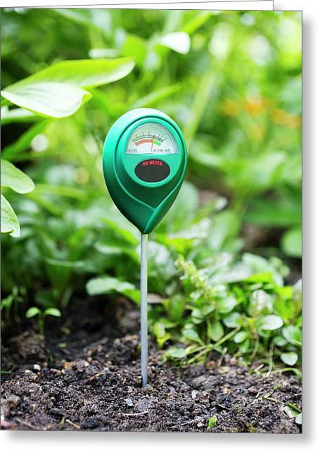 Soil Ph Meter Greeting Card by Science Photo Library