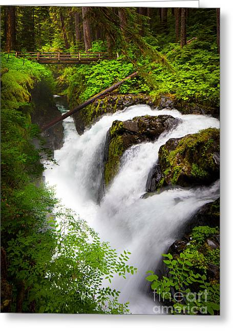 Sol Duc Falls Greeting Card by Inge Johnsson