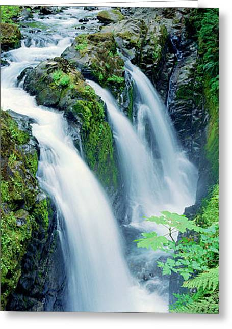 Wa Greeting Cards - Sol Duc Falls Olympic National Park Wa Greeting Card by Panoramic Images
