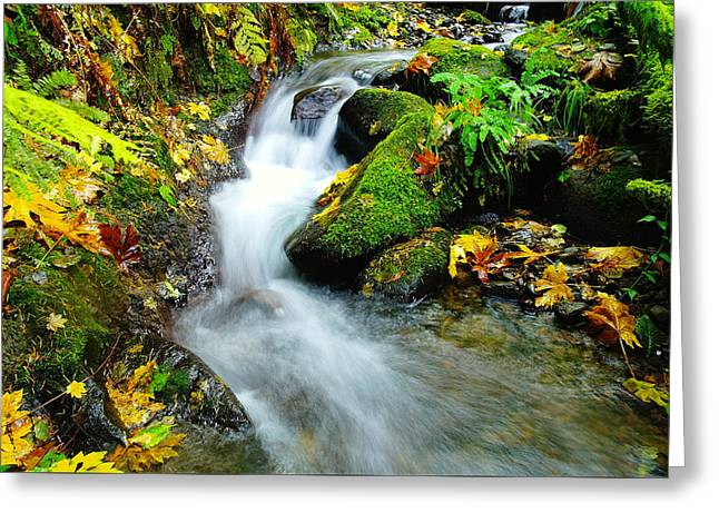 Stones Greeting Cards - Solace Flows Greeting Card by Jeff  Swan