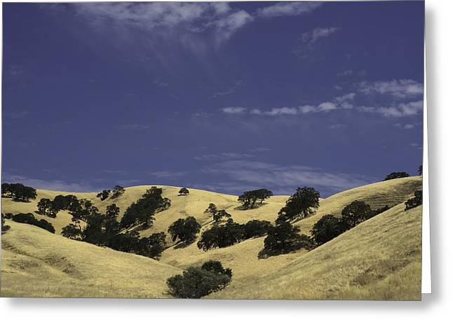 Solano Hills Greeting Card by Diana Weir