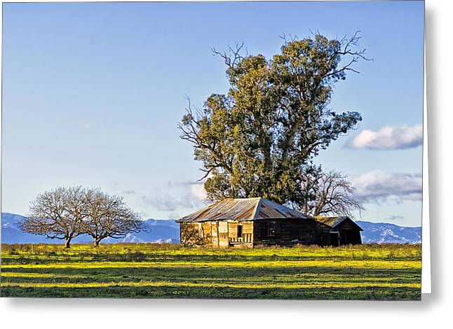 Solano Plains Greeting Card by Newman Artography