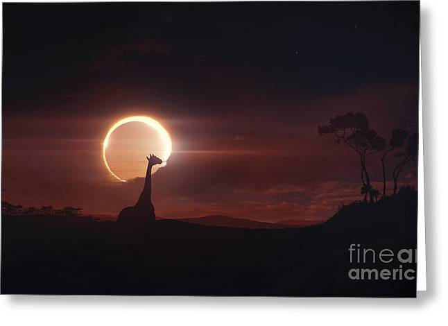 Solar Eclipse Digital Greeting Cards - Solar Eclipse Over Africa Greeting Card by Tobias Roetsch