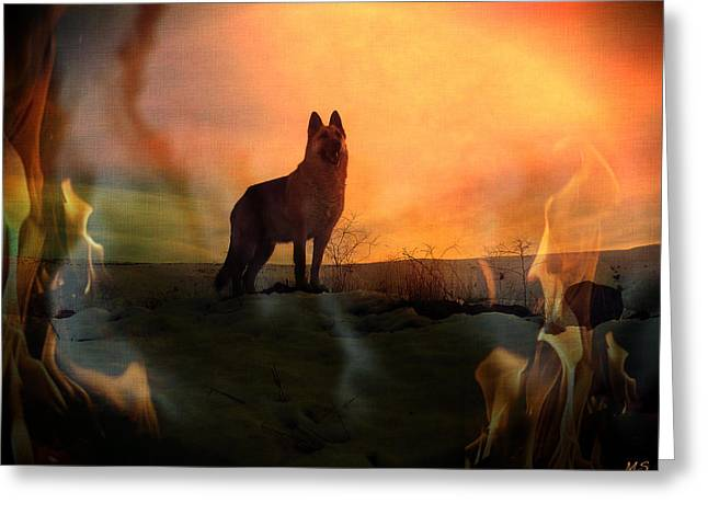 Dogs In Snow. Digital Art Greeting Cards - Solar Maximum - Earth Ends In Fire? Greeting Card by Absinthe Art By Michelle LeAnn Scott