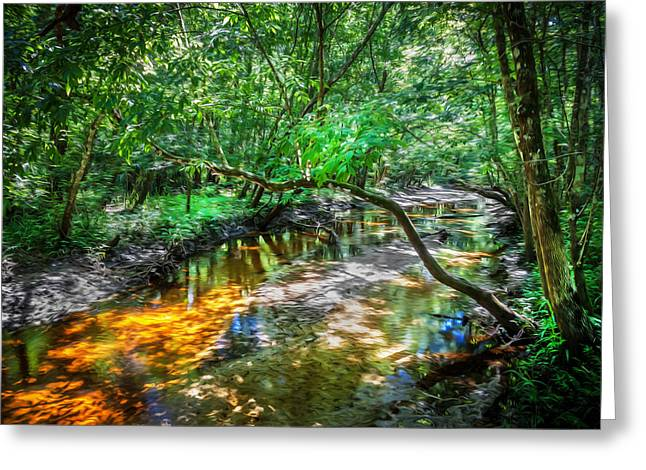 Environmental Center Greeting Cards - Soldiers Creek Seminole County Florida  Painted Greeting Card by Rich Franco