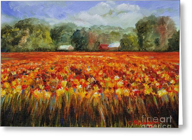 Solebury Farm Greeting Cards - Solebury Autumn Greeting Card by Cindy Roesinger
