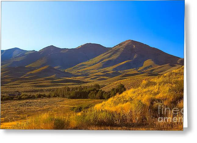 Solider Greeting Cards - Solider Mountain Shadows Greeting Card by Robert Bales
