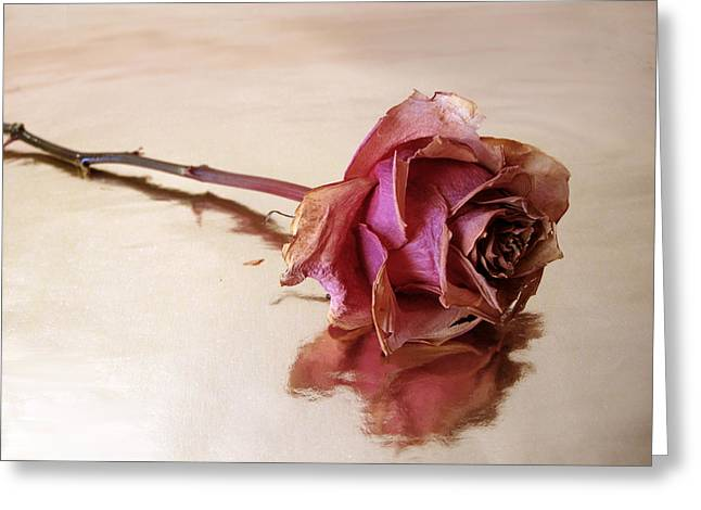 Flower Still Life Prints Greeting Cards - Solitaire Greeting Card by Jessica Jenney