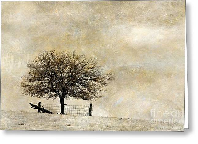 Rural Indiana Digital Art Greeting Cards - Solitary - D003455-a Greeting Card by Daniel Dempster