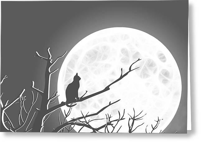 Promotional Greeting Cards - Solitary Gray Background Greeting Card by Methune Hively