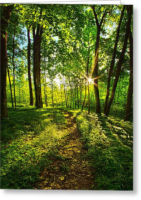 Hike Greeting Cards - Solitary Journey Greeting Card by Phil Koch
