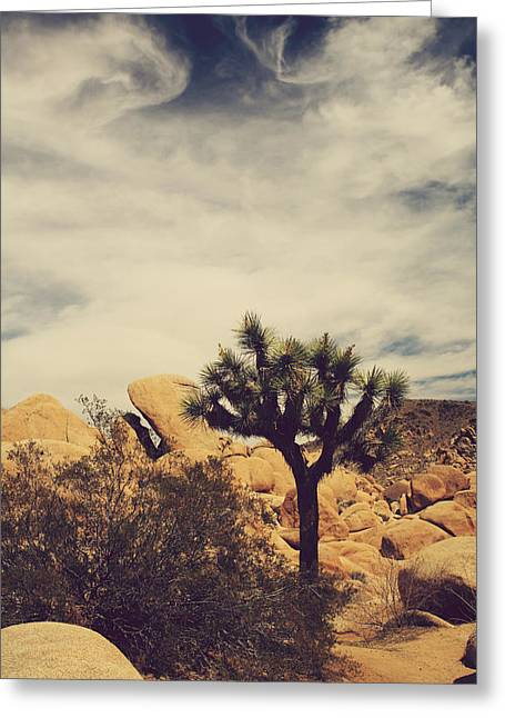 Ca Greeting Cards - Solitary Man Greeting Card by Laurie Search