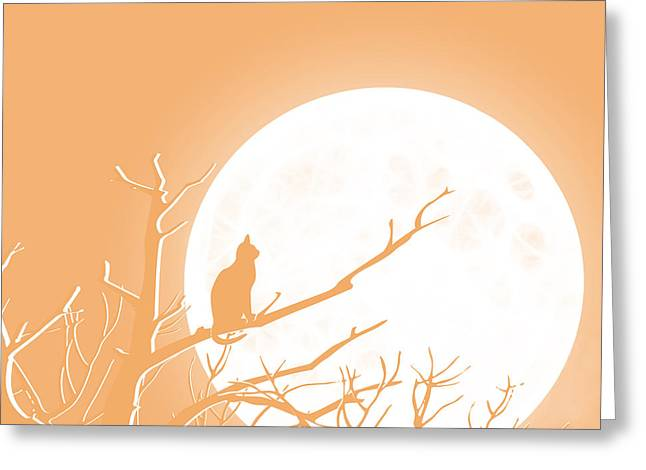 Orange Greeting Cards - Solitary Orange Background Greeting Card by Methune Hively