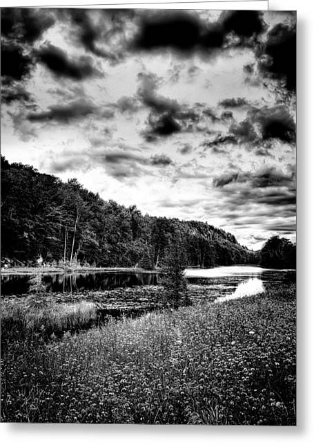 Adirondack Park Greeting Cards - Solitude at Bald Mountain Pond Greeting Card by David Patterson